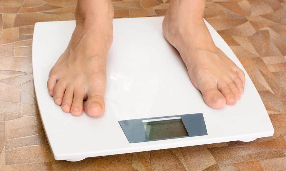 Fat & Technology Best Body Fat Scales