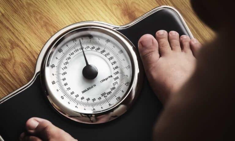 What is a Body Fat Scale