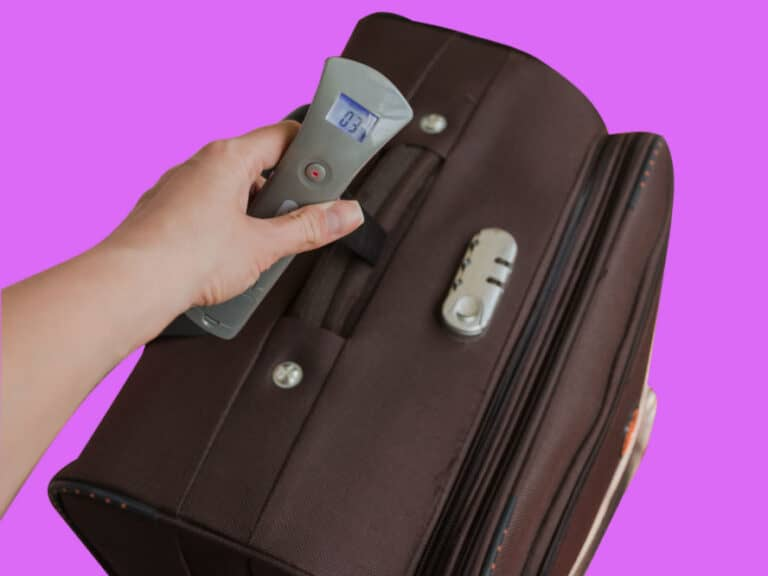 Tarriss Jetsetter Luggage Scale Your Best Travel Buddy