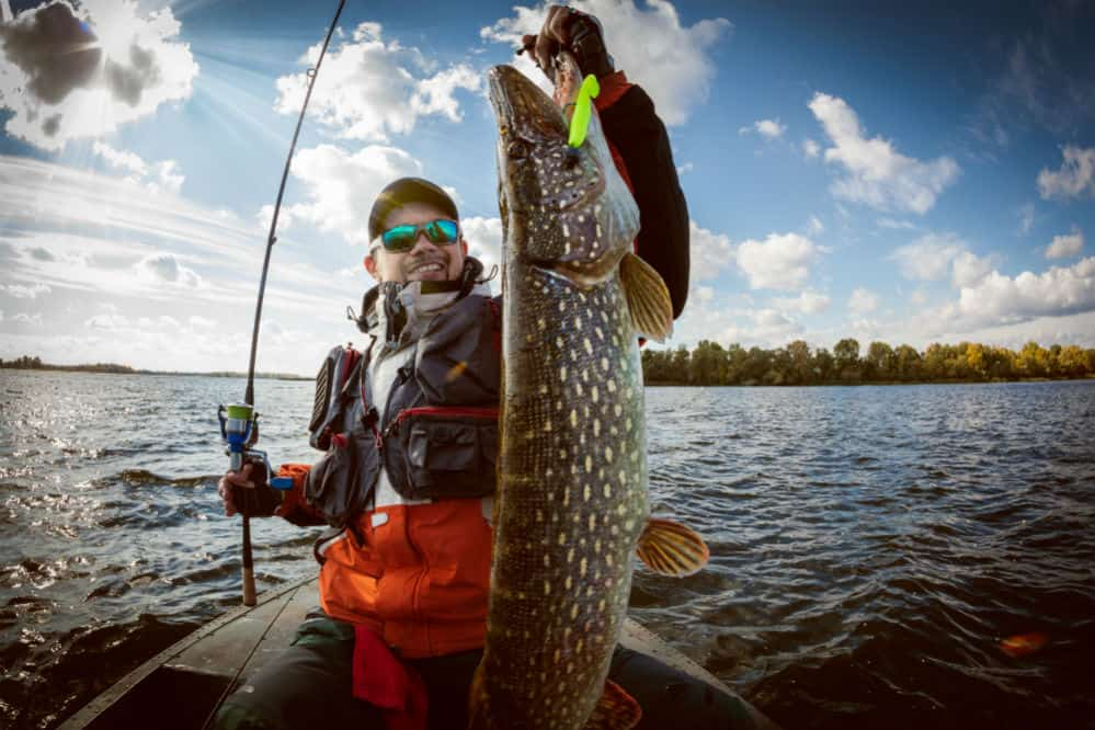 Best Digital Fish Scales to Improve Your Fishing Skills