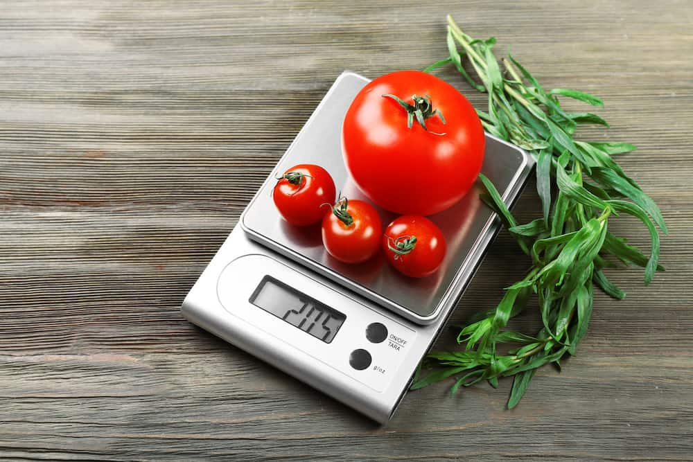 what to look for in a kitchen scale tips